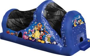 World of Disney Backyard Slide