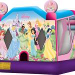 4-in-1 Disney Princess Trademark